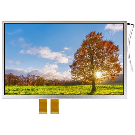 Display Winstar WF102ATIFGD0 TFT 10,2""