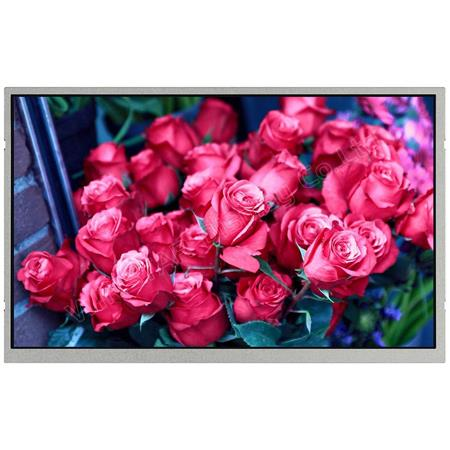 Display Winstar WF102DTIAHLNT0 TFT 10,2""
